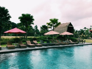 The sun lounger area right by the rice paddy fields and next to the main pool and pool bar